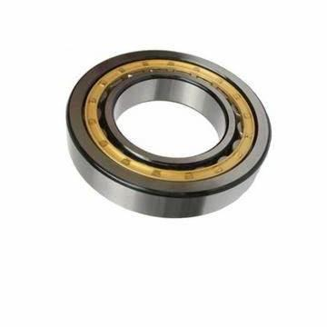 Factory Price Direct Supply SKF 51102 8102 51104 8104 51106 8106 Thrust Ball Bearing in Stock
