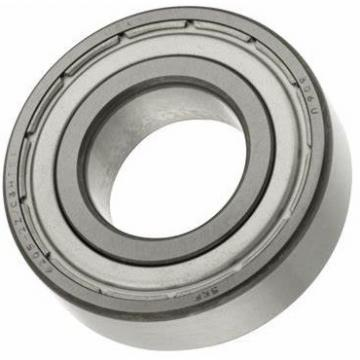 Skate Skateboard Bicycle Ceramic Stainless Steel Deep Groove Ball Bearing of Ss608 Ss609 Ss6204 Ss625 Ss695 (SS693 SS699 SS688 SS685 SS6201 SS6315 SS626)