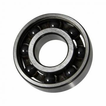 Ceramic Stainless Steel Ball and Roller Bearing Ss608 Ss609 Ss625 Ss626 Ss688 Ss695 Ss6301 Ss6302 (SS51110 SS51105 SS51108 SS51210 SS51212 SS51203)